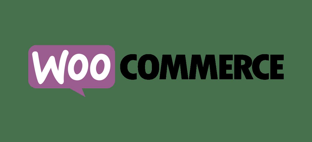 Webshop erstellen lassen
